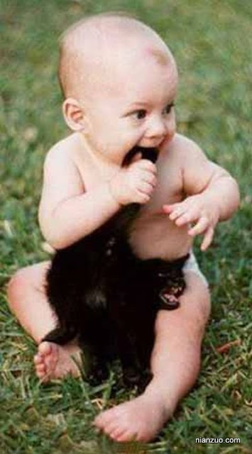 孩子捣蛋 吃猫,猫