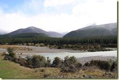 De Picton al Lago Rotoiti (50)