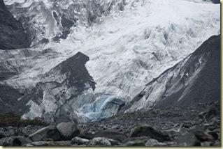 Glaciar Franz Josef (35)