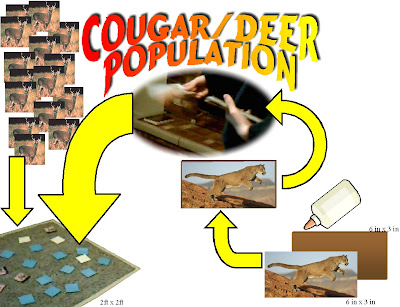 Cougar vs Deer Population