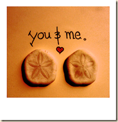 You___Me____Sand_Dollars_by_ScareyBunny