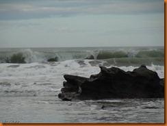 kayakdownundernzleg3-00531