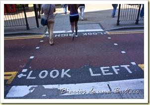Look Left-1