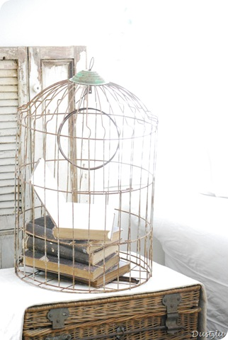 Bird Cage 1 002