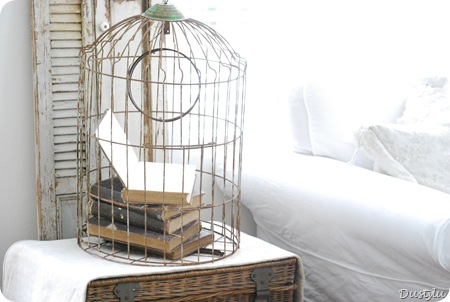 Bird Cage 1 025