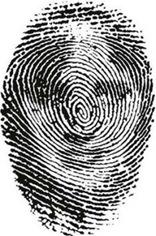 fingerprint illusion