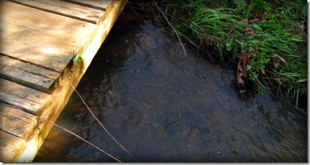 water_under_bridge