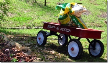 Radio_Flyer_wagon