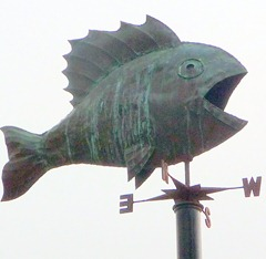 fish on pole
