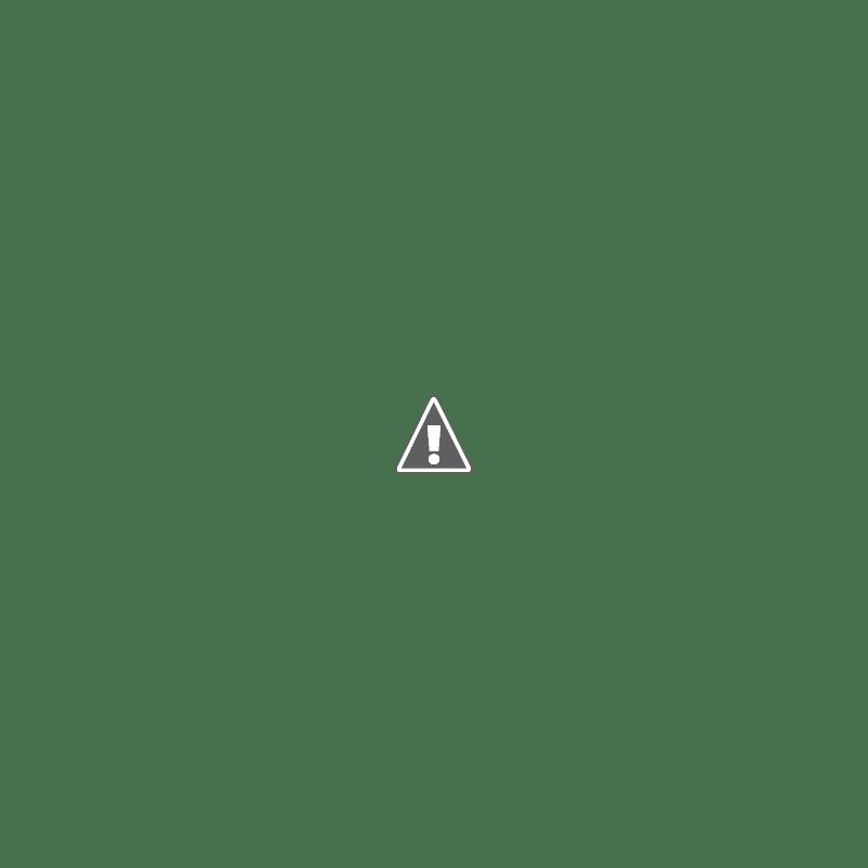 Belalang Pink yang Sangat Langka Ditemukan