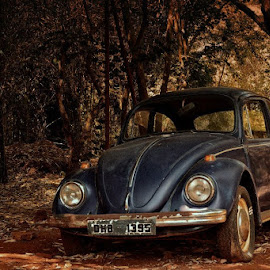 #vintage #beetle #classicfeel by Achuth Raj - Novices Only Objects & Still Life ( love, car, old, vintage, automobile, beetle, classic )