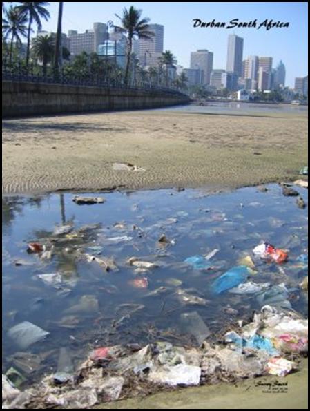 Durban park beachfront Pic by Snowy Smith Death of Durban rageblog