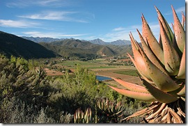 Oudtshoorn Schoemanshoek Farms are  Land REstitutin Claims register
