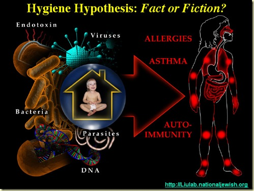 HygieneHypothesis_Allergies_liulab org