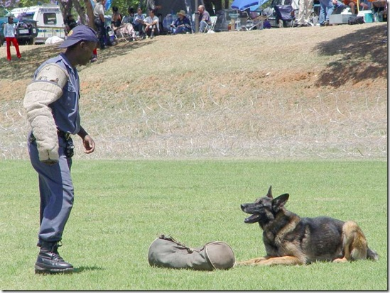 Police dog training units are demoralised in South Africa writes this author