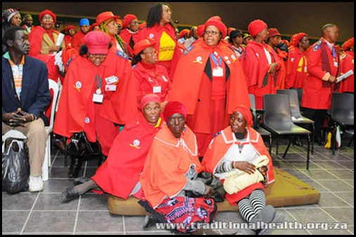 Traditional Healers tried to break down the doors of health department Pretoria Aug 27 2009