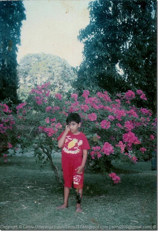 Lahiru Udayanga 1994 @ Haggala Garden. ®