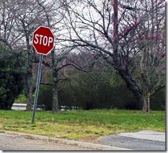 stop sign crop