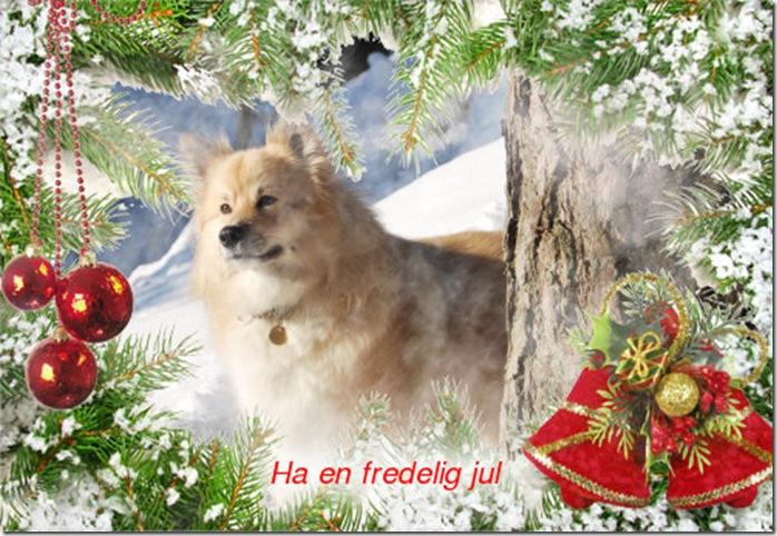 Milli julekort