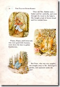 peter rabbit_4