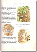 peter rabbit_7