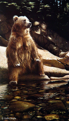 40 Beautiful 