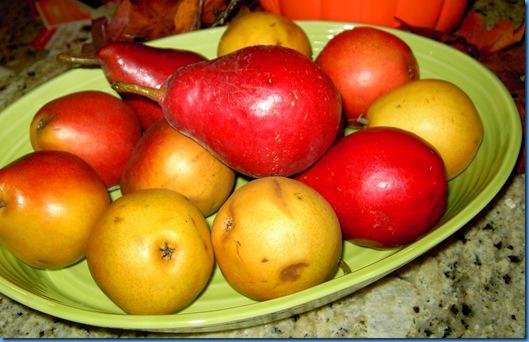 fall pears 003