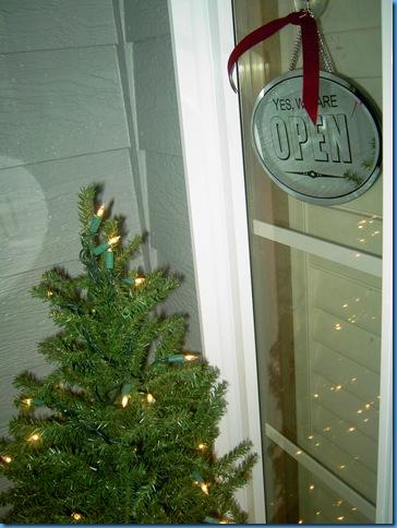 Christmas show 2009 010