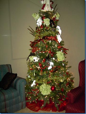 Christmas 2005 002