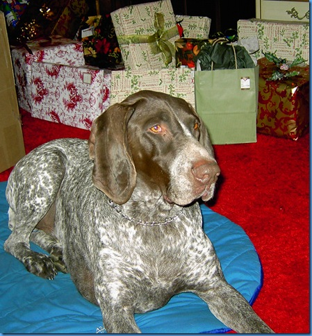 Christmas 2004 019
