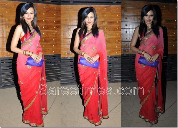 Mrinalini_Sharma_Pink_Designer_Saree