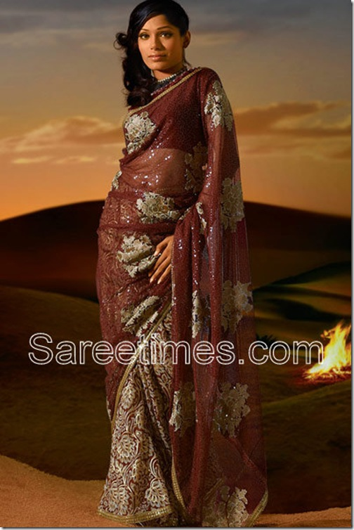 Frieda_Pinto_Maroon_Saree