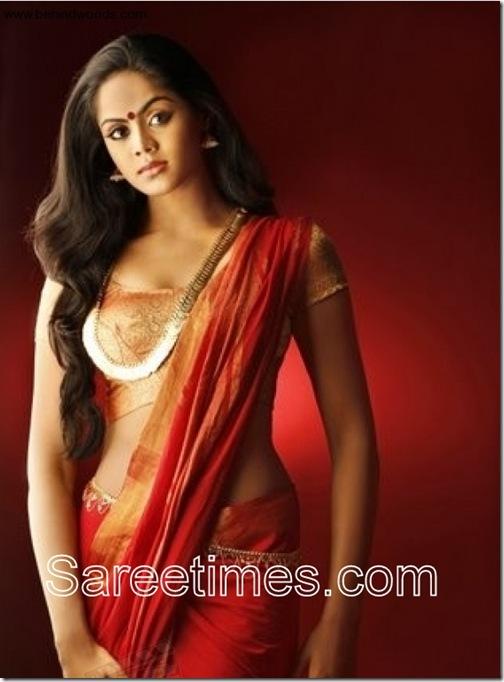 Karthika_Designer_Saree