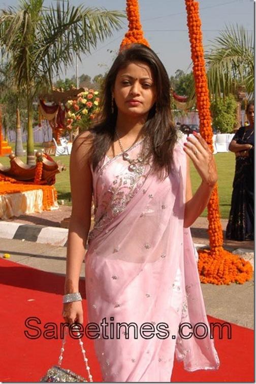 Sneha-Ullal-Pink-Saree