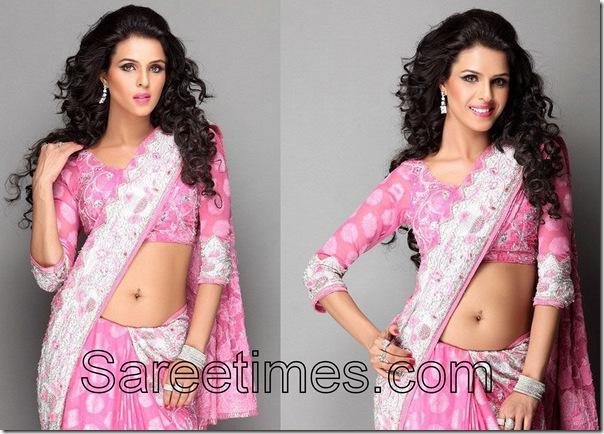 Priyanka_Chaudhary_Designer_Saree
