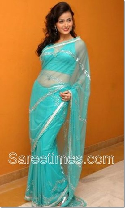 Tanya_Blue_Saree