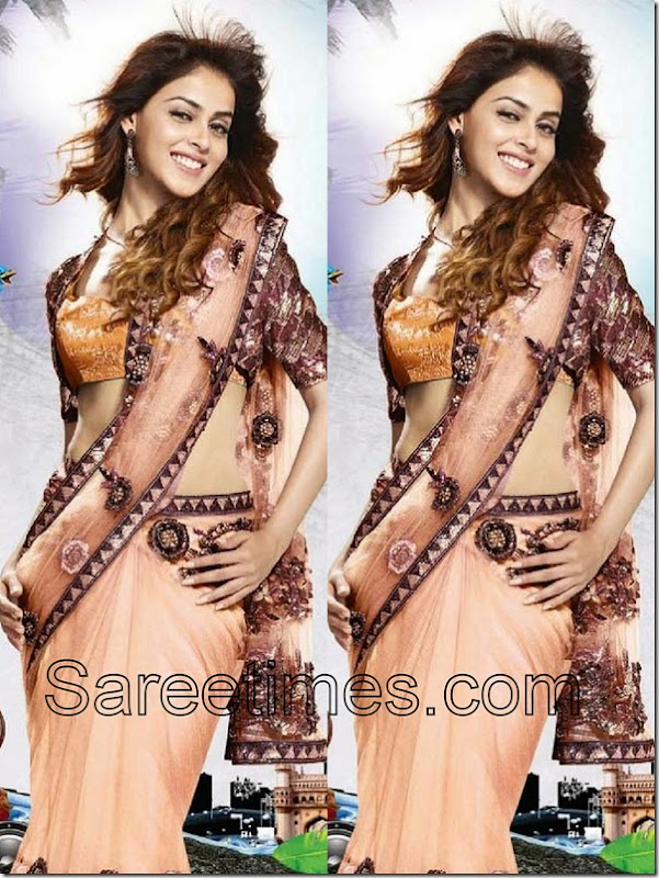 Genelia_Georgette_Saree