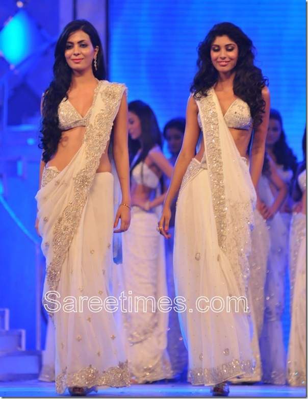Embroidery_Saree