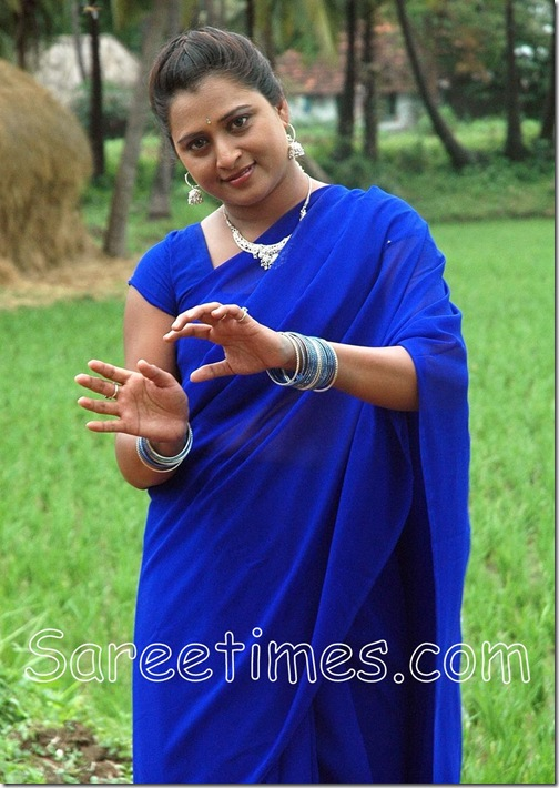 Farah_Khan_Blue_Saree