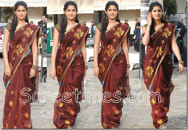 Deeksha_Seth_Brown_Saree