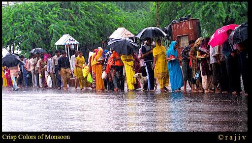 Crisp Colors of Monsoon! © RajivKumar