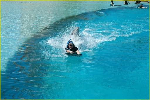 miley-cyrus-atlantis-sea-lion-05.jpg
