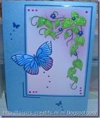 Leane de Graaf Kit Papillons