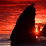 Nature HD 35 - 16.jpg