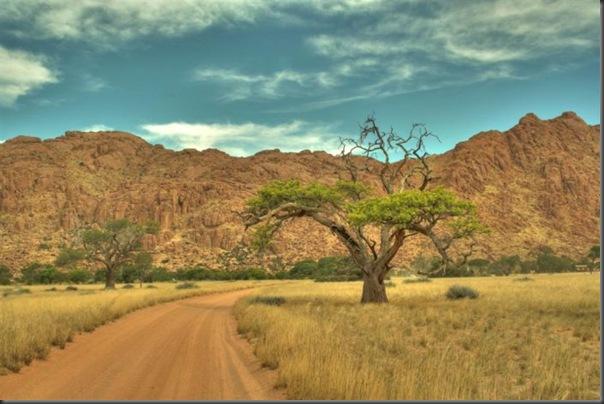 Lindas imagens da africa (4)