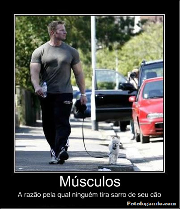 desmotivacional - músculos