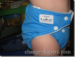 fuzzibunz perfect size diaper