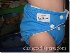 fuzzibunz perfect size diaper