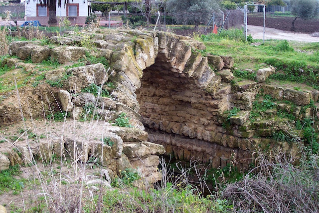 Puente Cañito María Ruiz (1)