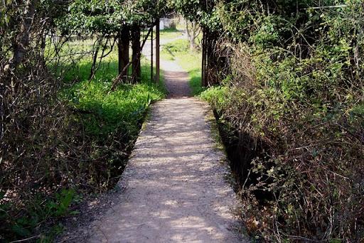 Entrada al camino